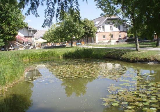 Beispiel: Hauseigener Teich, Foto: Felmayer's Gastwirtschaft.