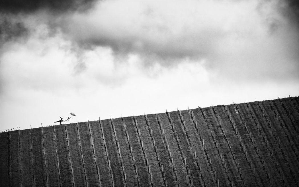 Beispiel: Fotokunst, Foto: Robin Schimko Photography.