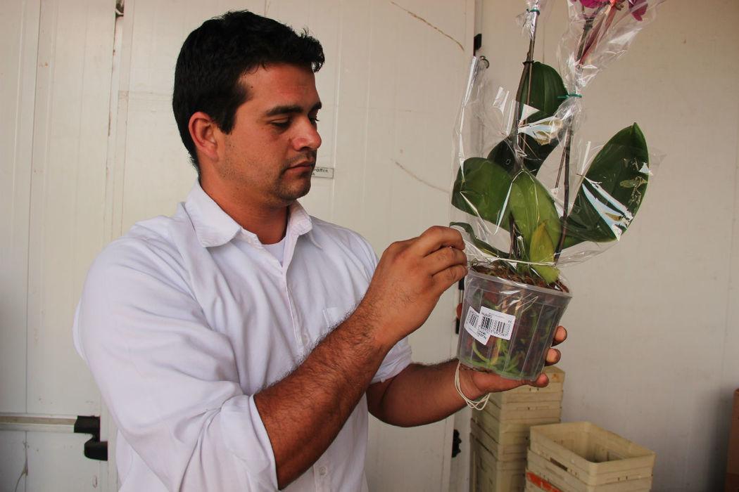 Preparação de Orquídea Vaso