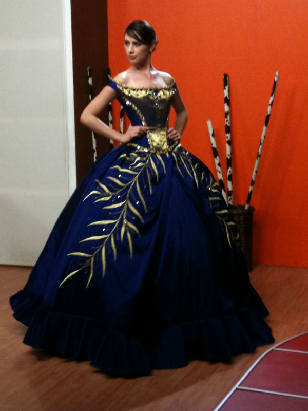 diseño de vestido de XV años , Alberto Rodriguez