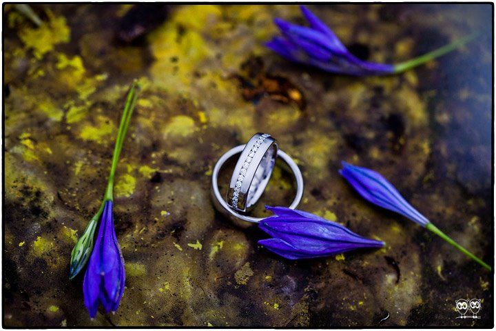 Beispiel: Detailfotografie Ringe, Foto: Kajul Photography.