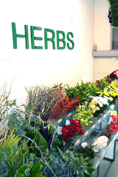 Herbs floristerías