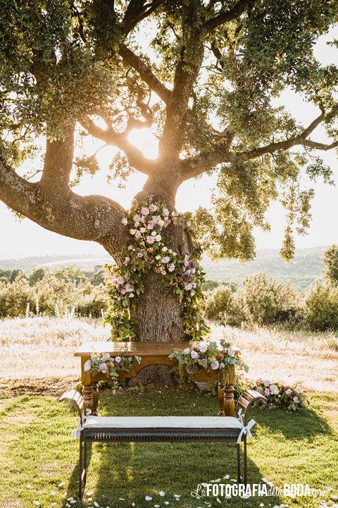 Ceremonia civil bajo el árbol al atardecer