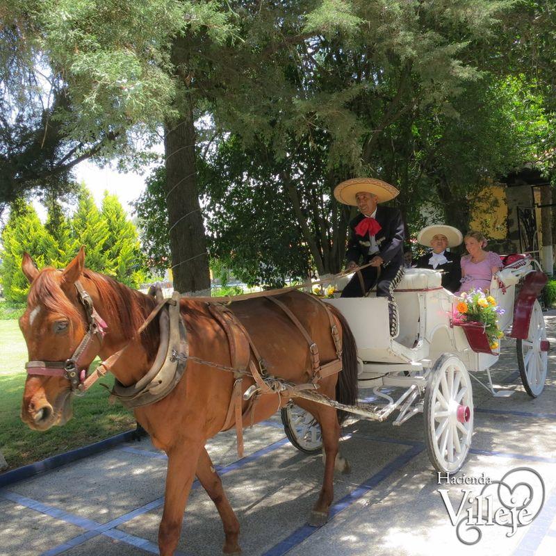 Entrada triunfal de los novios en una típica calandria en la Hacienda Villejé.