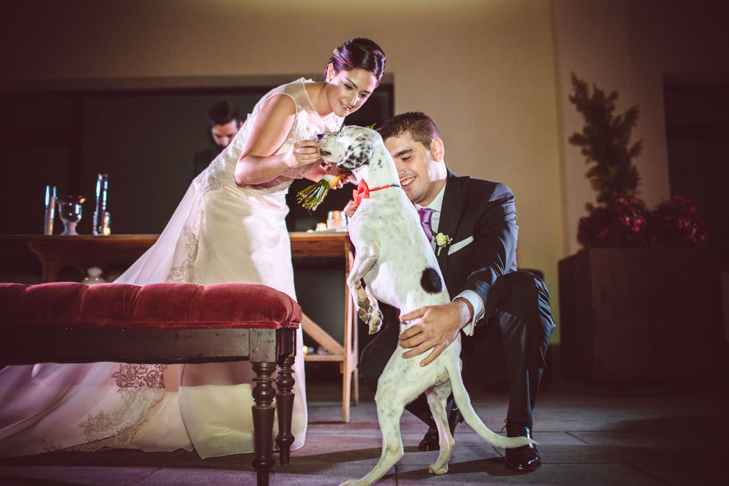 T+A boda romántica de noche Un portador de alianzas muy especial