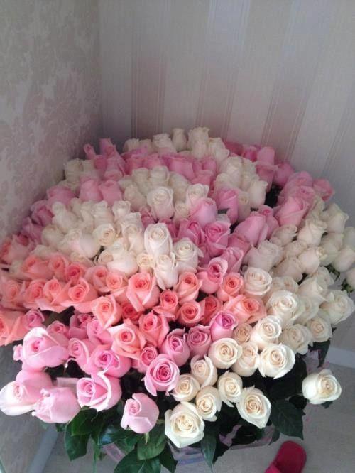 La Fleur a Ses Raisons