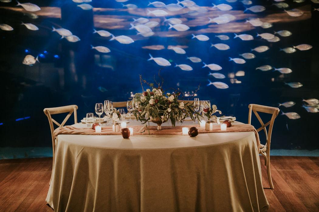 Restaurante Submarino Oceanogràfic