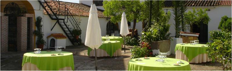 Patio - Hacienda La Vara