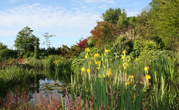 De Groene Watertuinen