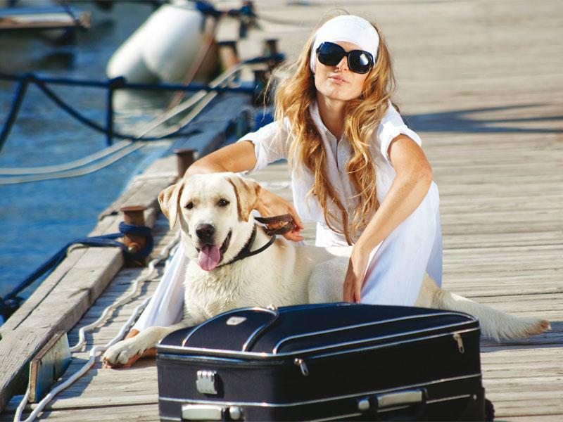 Beispiel: Kreuzfahrt mit Hund, Foto: 1A Vista Reisen.