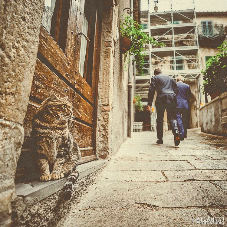 Milanesi PhotoStudio