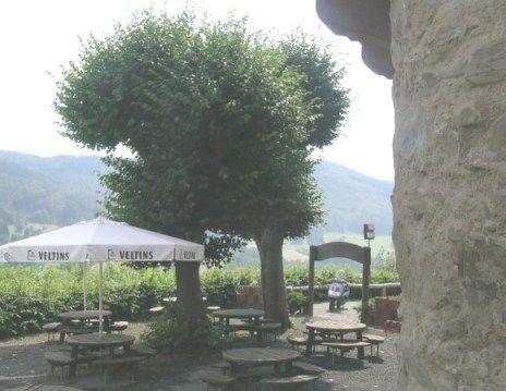 Beispiel: Biergarten, Foto: Schlossterrasse.