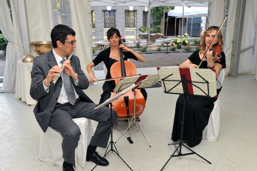 MG Musica