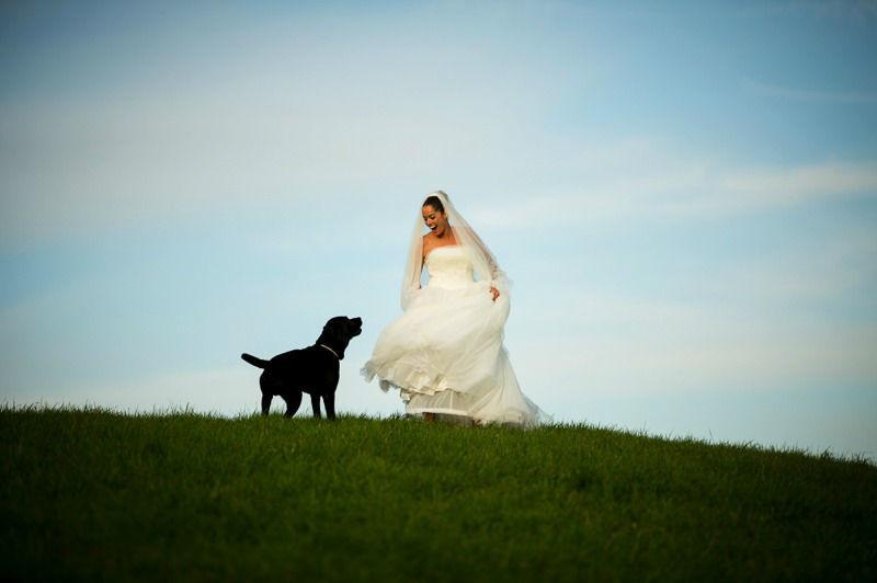 Beispiel: Portrait der Braut, Foto: Licht Film.