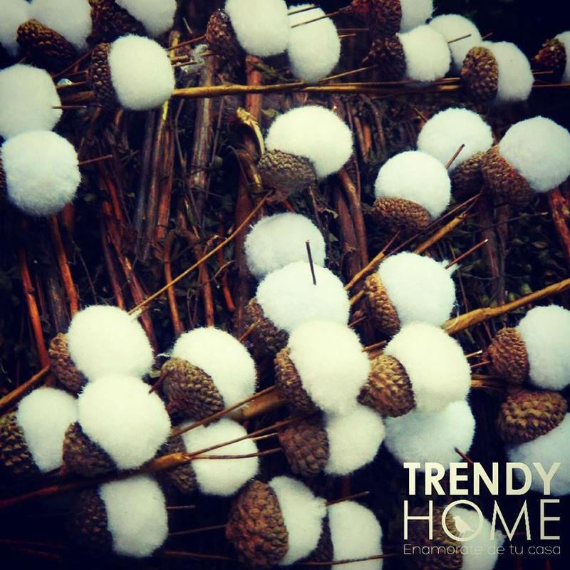 Trendy Home
