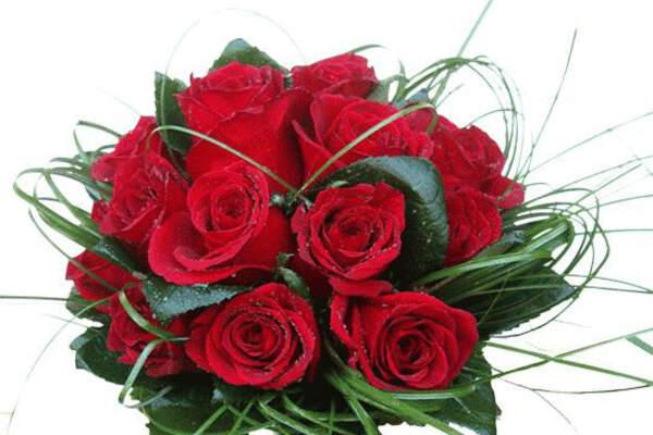 Pétalos arte floral