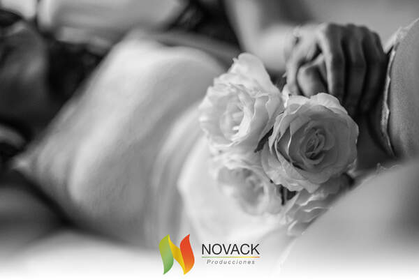 Novack Wedding Planner