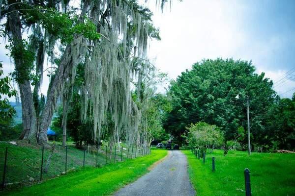 Hacienda El Diamante