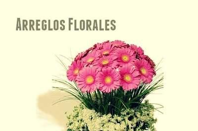 Rosazul Florería