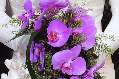 Blumenhaus Mäglin