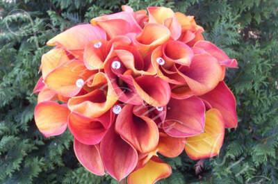Pracownia florystyczna Astra