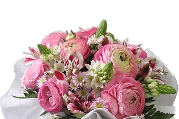 WebFlor Florista Santa Marta