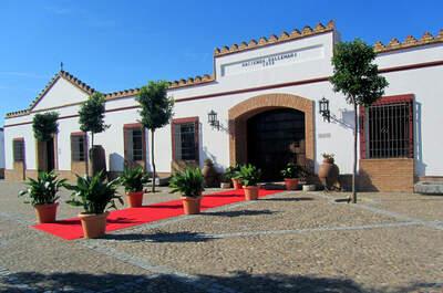 Hacienda Ballemari