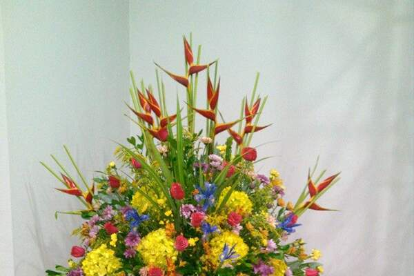 Florería Las Palmeras