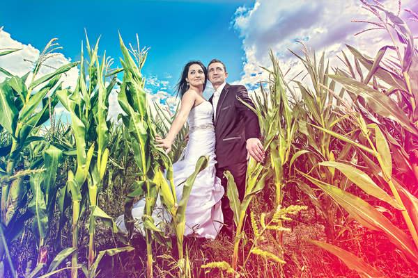 recfilm.com.pl - filmy ślubne i fotografia