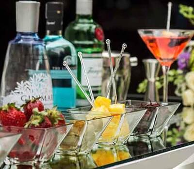 Barra de Gin, luciendo excelentes ginebras