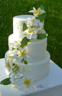 Kleine Hochzeitstorte zu 30 Personen, ausgeschmückt mit Frangipani Blüten aus Zucker. Foto: Bruggers My weddingcake.ch