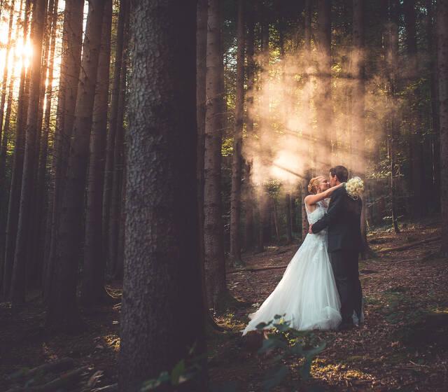 Heiraten im Märchenwald - Deininger Weiher