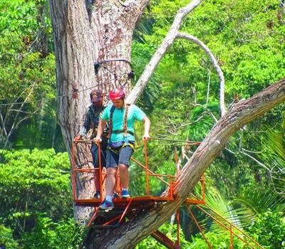 Tierra Verde Tours