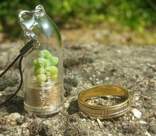 baby plante mini cactus cadeau de mariage personnalisé