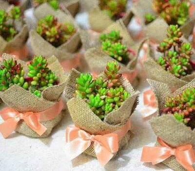 Plantitas con yute personalizados