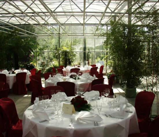 Württemberg baden hochzeit gewächshaus Hochzeit