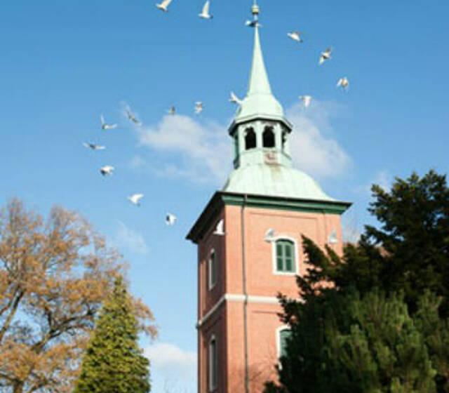 Zwei Weisse Tauben Hochzeit