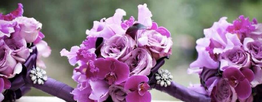 Ewe Events & Wedding