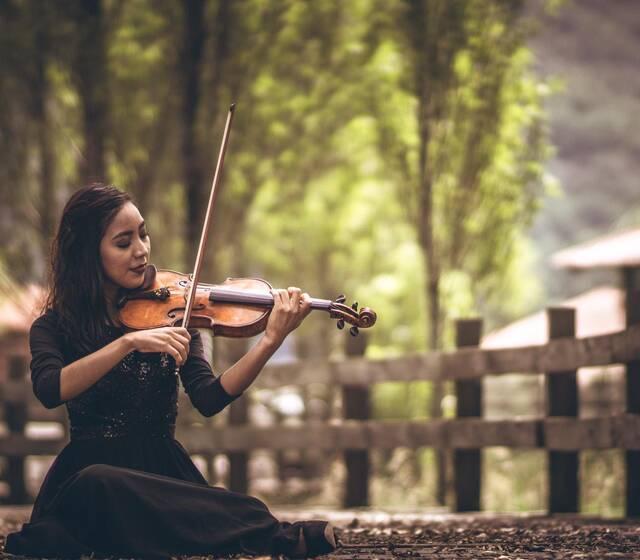 Bella String Cuarteto de Cuerdas