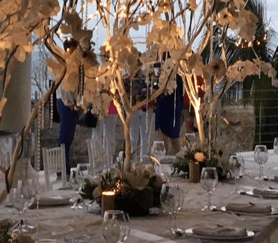 Esther Rodado Wedding And Event Planner