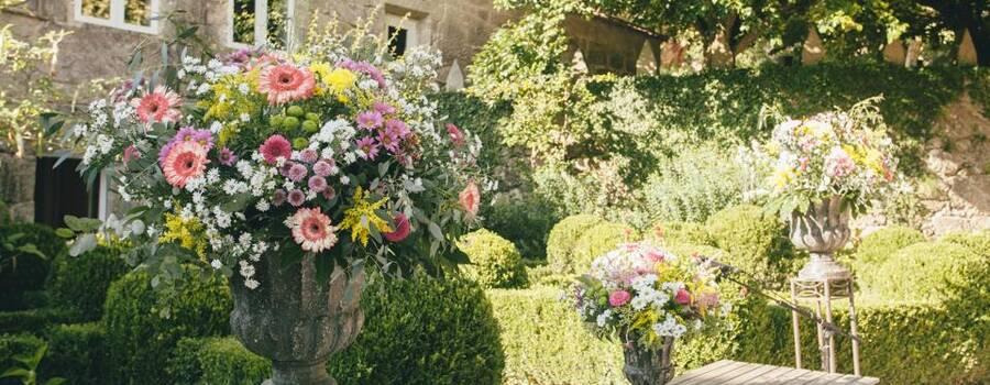 Galo Floristas