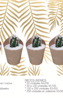 Recordatorios / Ref. MINI KRAFT * Planta natural