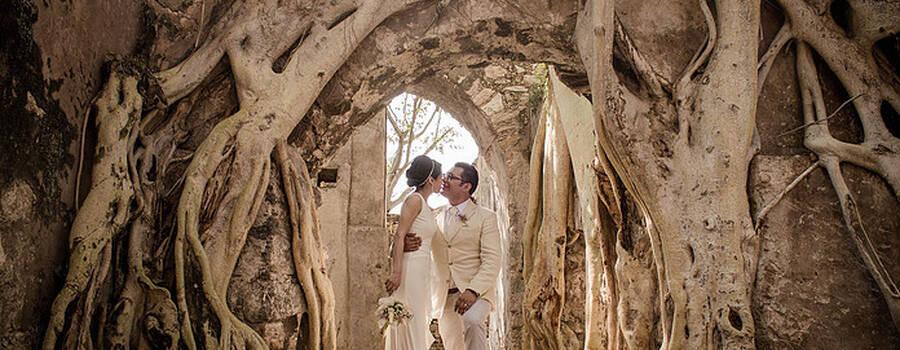 Rhizomes Films - San Miguel de Allende
