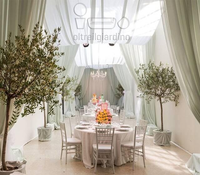 allestimento leggero e piante ornamentali in vaso