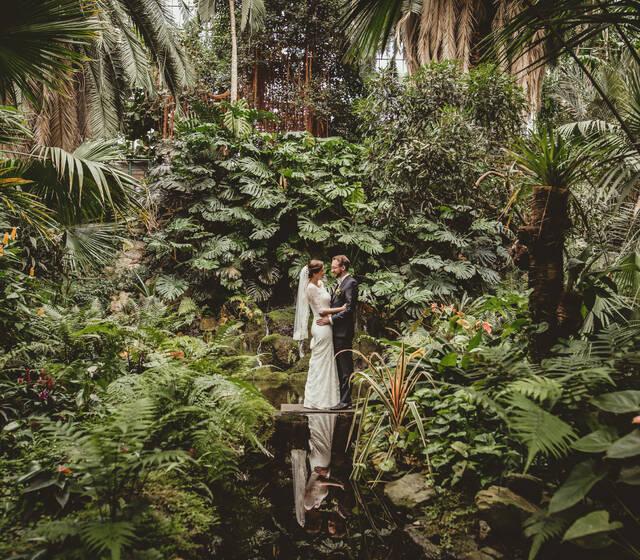 Brautpaar Shooting Palmengarten