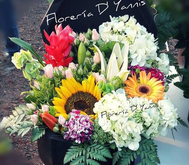 Florería D' Yannis
