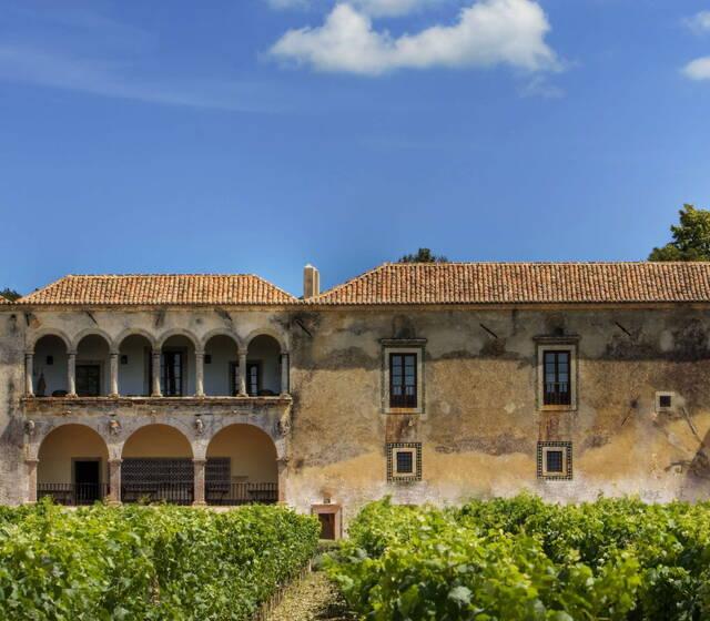 Palácio da Bacalhôa