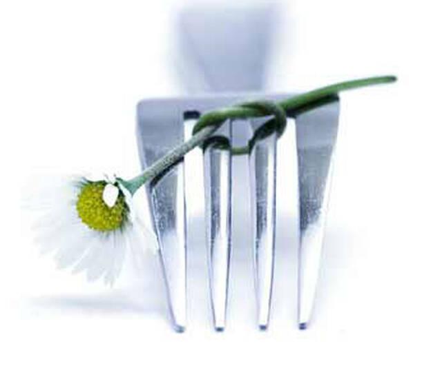 Beispiel: Catering- und Eventservice, Foto: C|E|S.