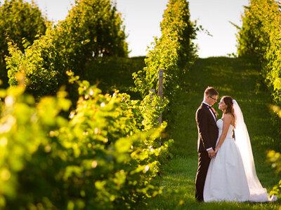 Sesja ślubna w winnicy oraz w jabłkowym, sandomierskim sadzie! Zapraszamy!