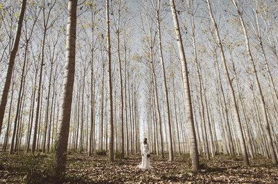 Nada mejor que el romanticismo: sesión de inspiración Fall in Love